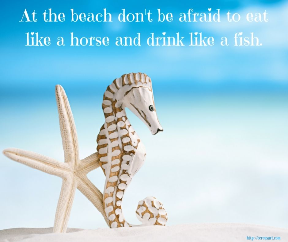 Advice From The Seahorse Night Life Drinks Drink Specials