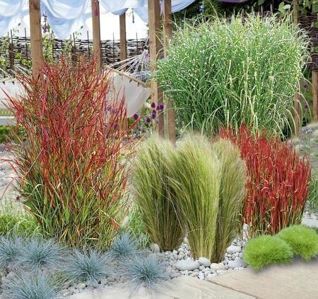 Mein schöner Garten Gräserbeet Sonne, 16 Pflanzen #gartenlandschaftsbau