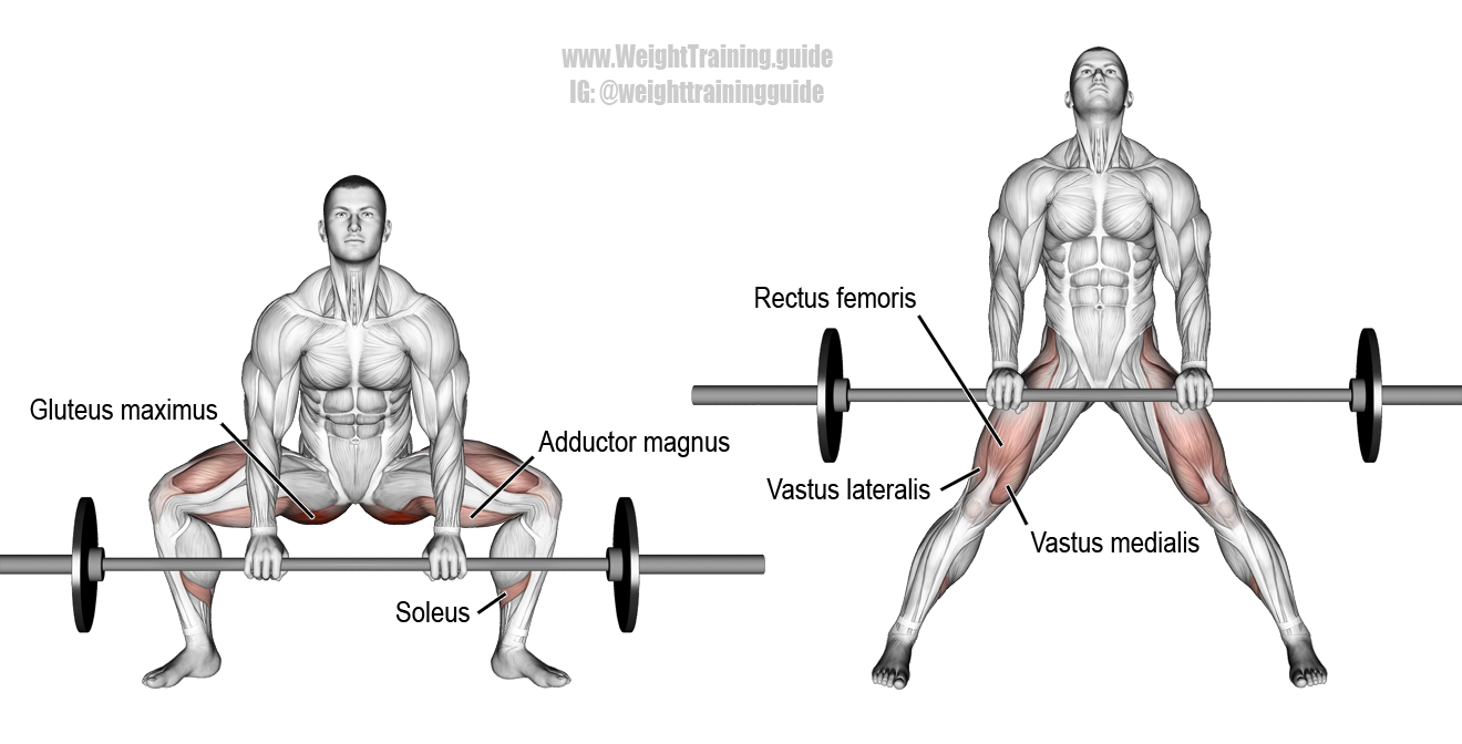 Barbell Sumo Deadlift Instructions And Video Weight Training Guide Deadlift Fitness Body Barbell Deadlift
