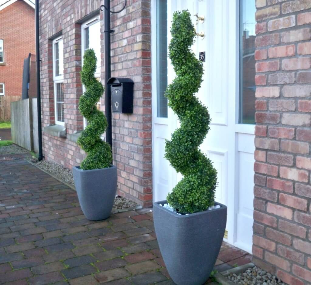 Front Door Topiary: Home Decoration, Front Door Double Spiral Topiaries