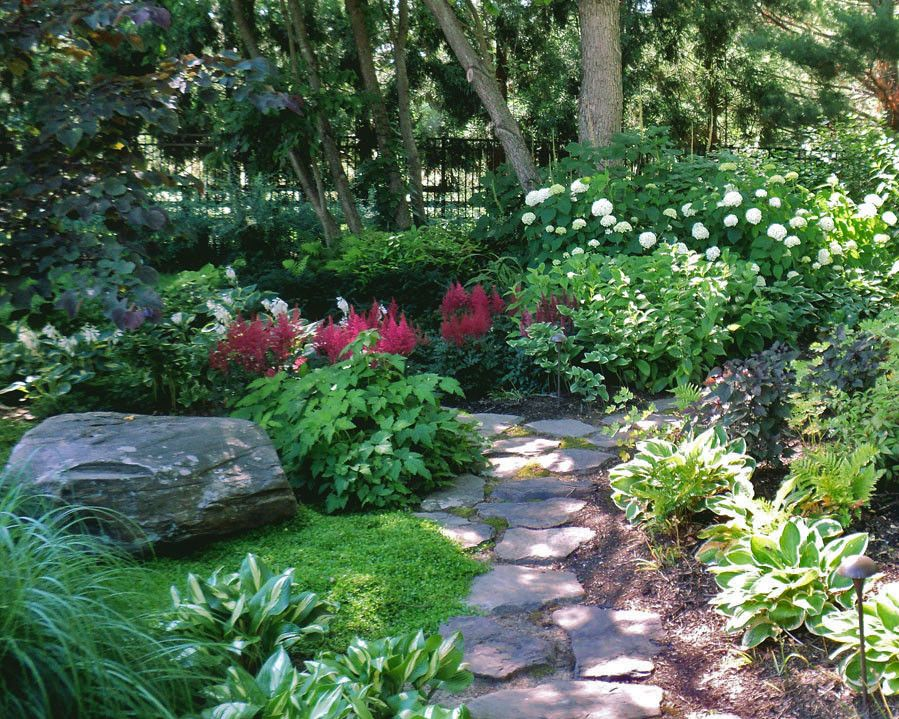 shade gardens with floering vine ideas | shade garden with stone