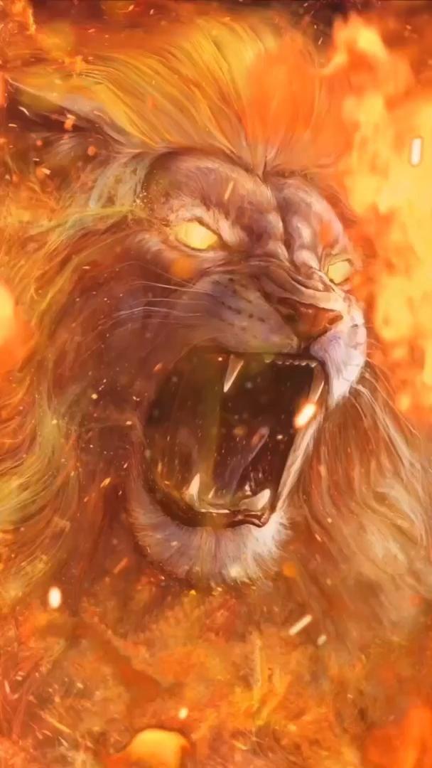 Burning Lion Hd Live Wallpaper At Screen Video Lion Images Lion Live Wallpaper Fire Lion