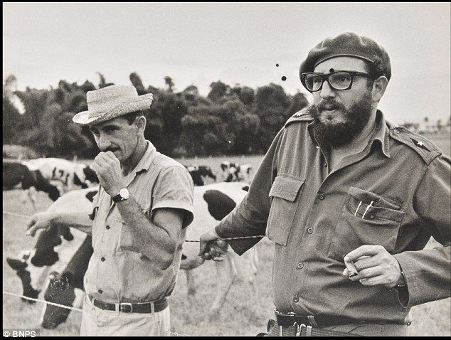 Communists who tore down a government - then went for a nice game of golf: Rare pictures Castro and Che Guevara tweaking Eisenhower's tail #cubanleader Castro with a Cuban dairy farmer: Korda followed the Cuban leader on state visits for 10 years and was his personal photographer #cubanleader Communists who tore down a government - then went for a nice game of golf: Rare pictures Castro and Che Guevara tweaking Eisenhower's tail #cubanleader Castro with a Cuban dairy farmer: Korda followed the C #cubanleader