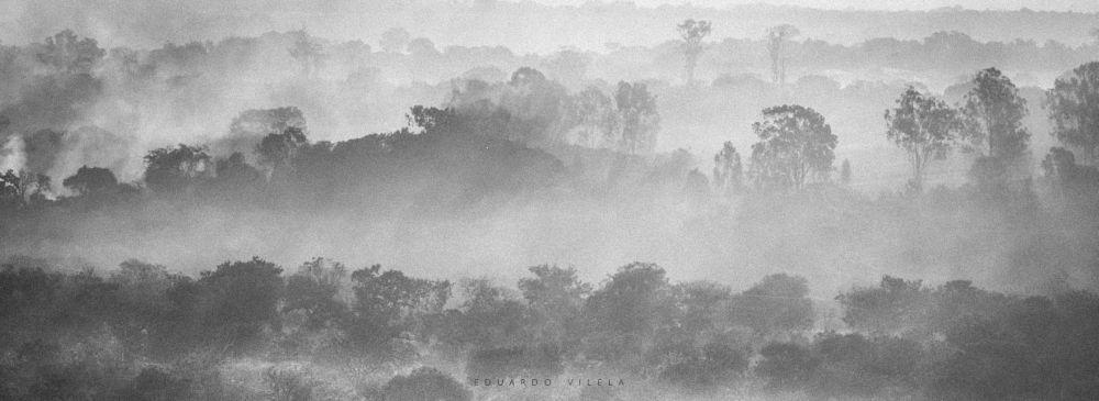 Layers by Eduardo Vilela