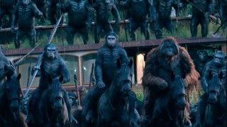 Neue Bilder aus Planet der Affen – Revolution #PlanetoftheApes #PlanetderAffen