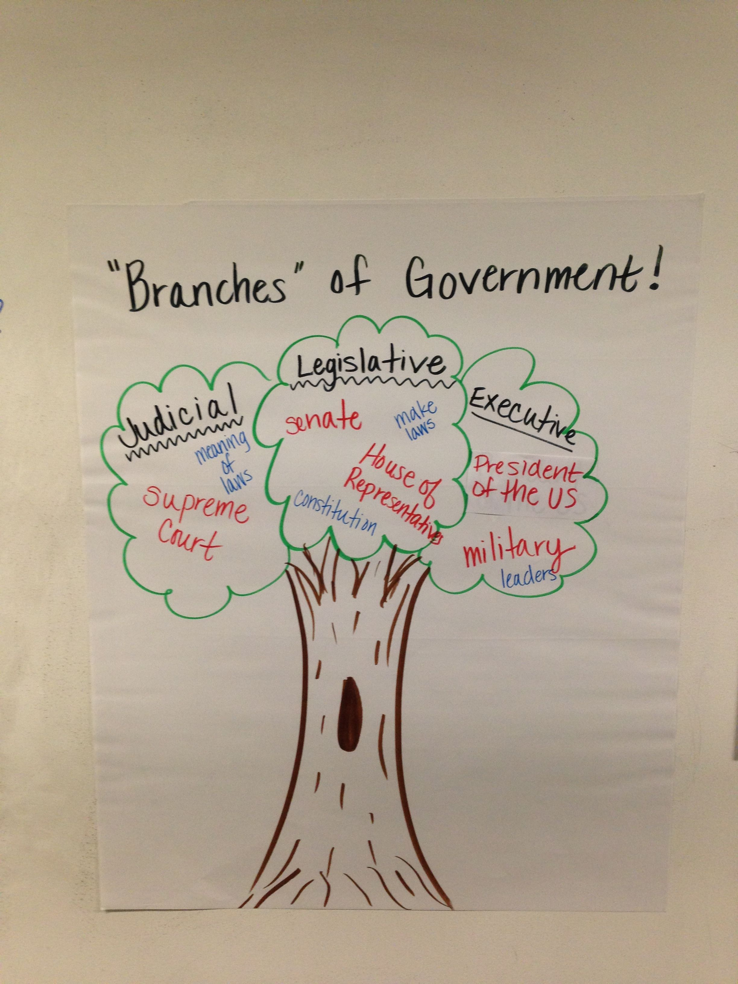 Branches of Government Tree... Used during constitution/freedom week.