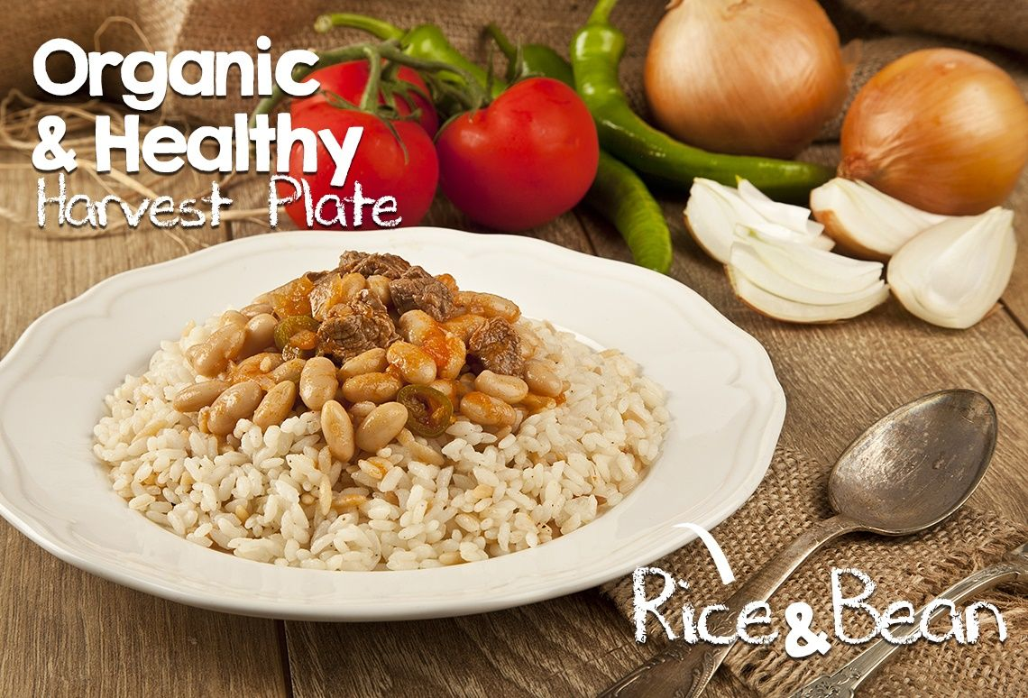 Harvest Express Organic Fast Food Houston Tx Vegan Restaurantsfast