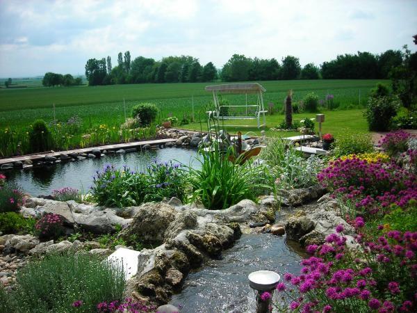 Piscine naturelle avec cascade piscine bassin id es - Autoconstruction piscine naturelle ...