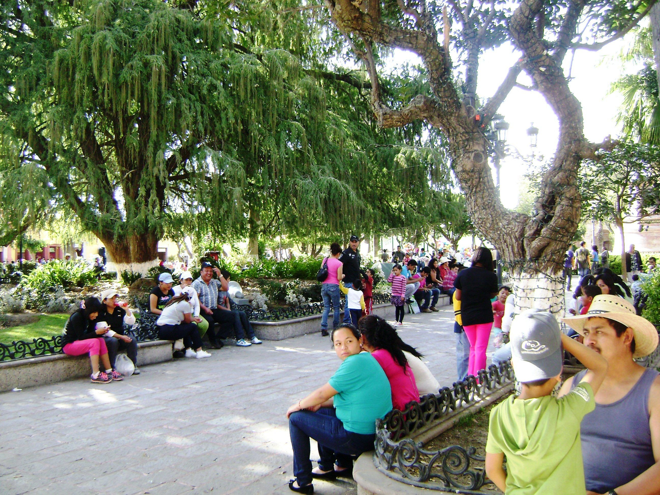 Jardin Dolores Hidalgo Dec 2012 Ssa San Miguel De Allende Gto  # Muebles Dolores