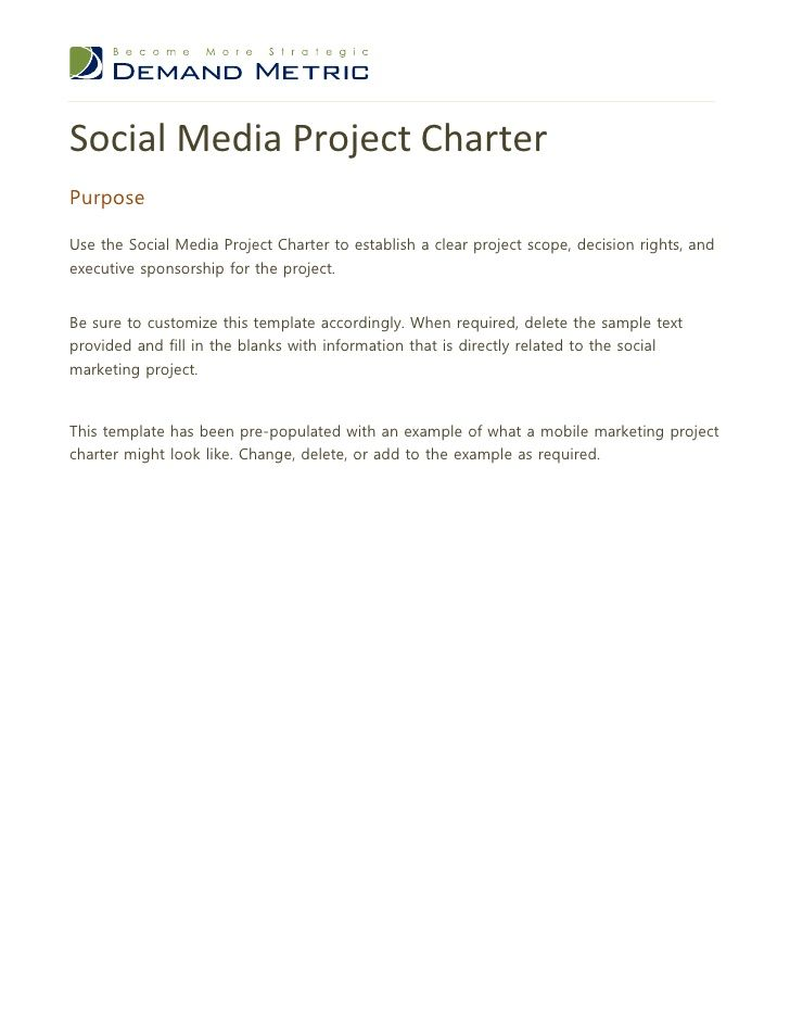 Social Media Project CharterPurposeUse the Social Media Project ...