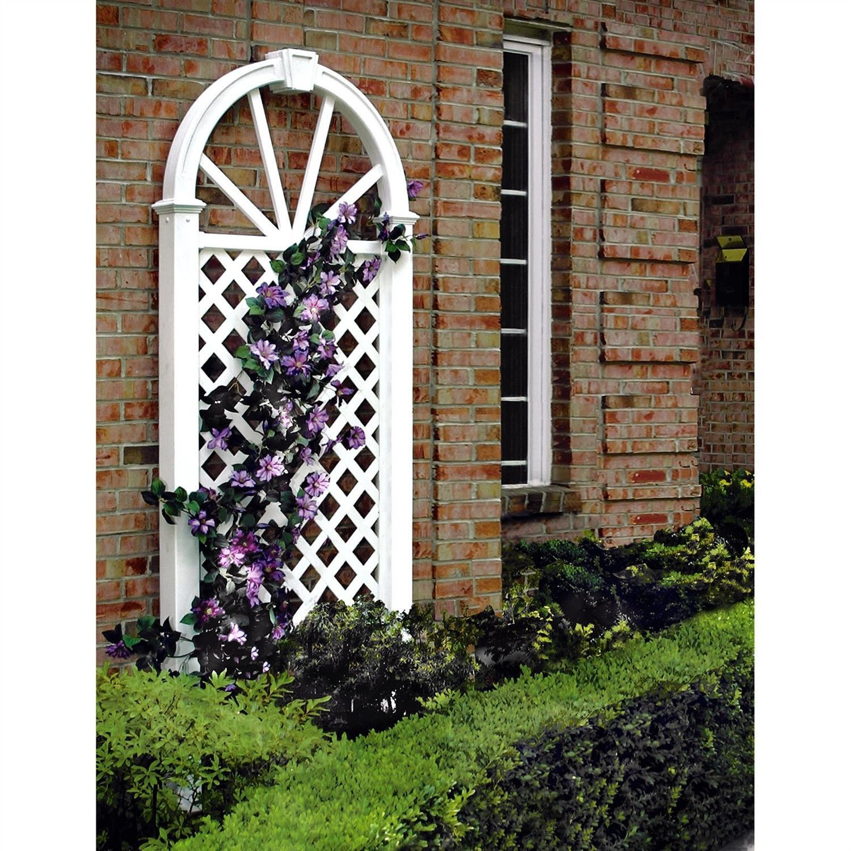 Garden Trellis, Arch Trellis, Backyard