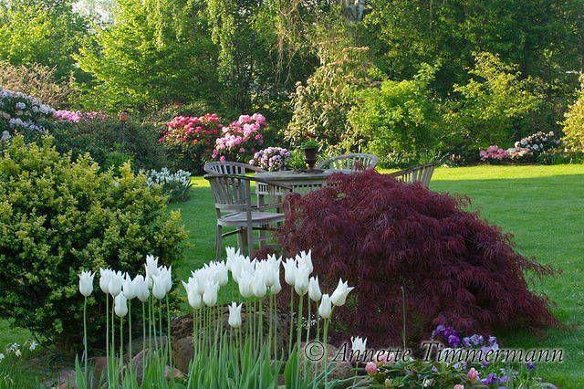 Gartenfotos Garten Gartenpflege Privatgarten