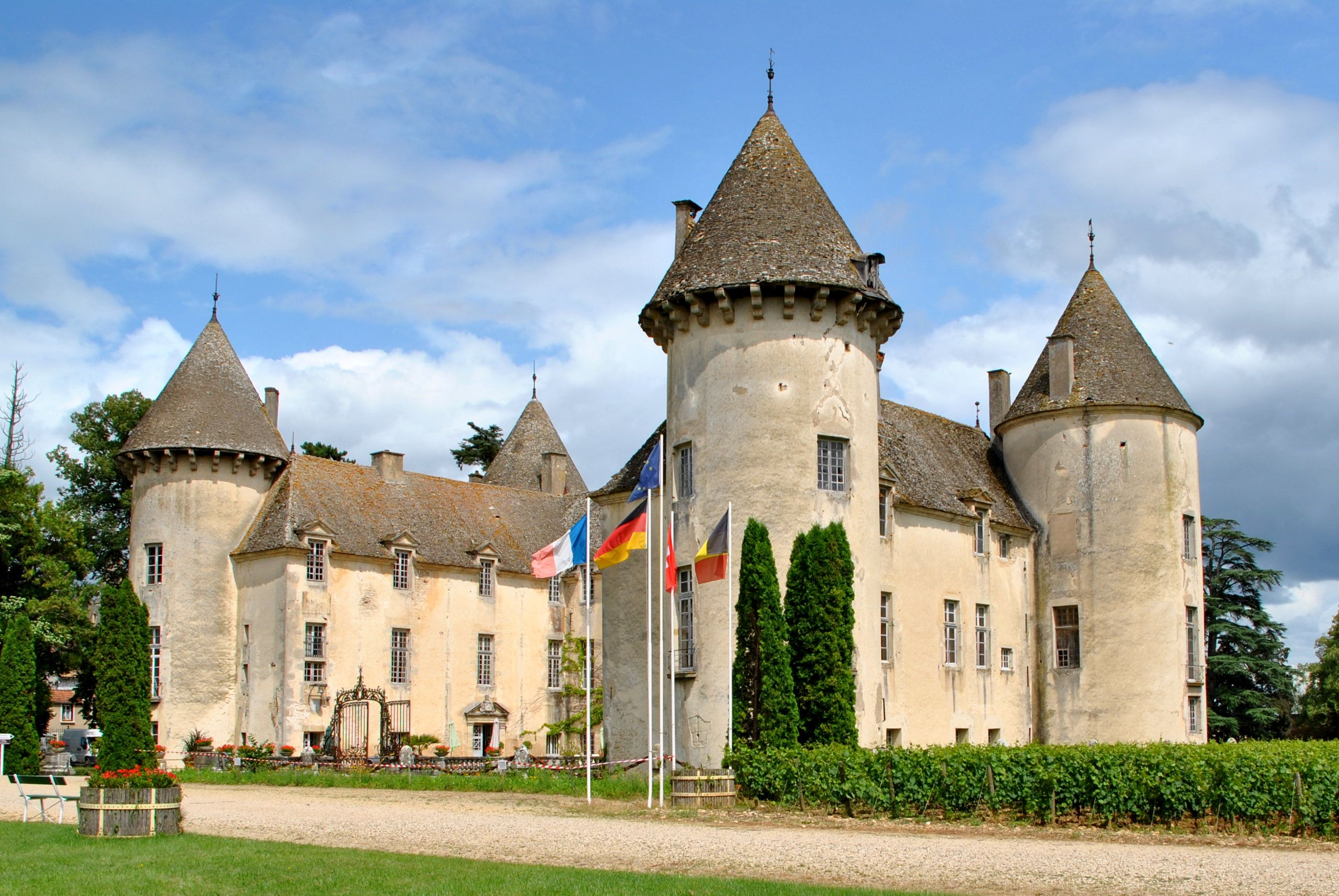 ch teau de savigny l s beaune bourgogne travel scenic photos pinterest castles france. Black Bedroom Furniture Sets. Home Design Ideas