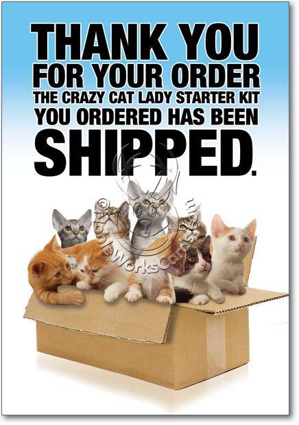Cat Lady Starter Kit Birthday Greeting Card Funny Birthday Cards Crazy Cat Lady Crazy Cats