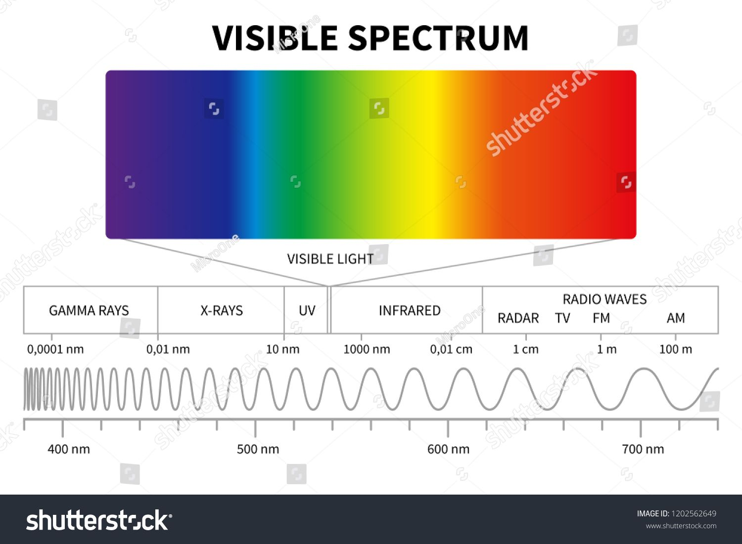 Visible Light Diagram Color Electromagnetic Spectrum