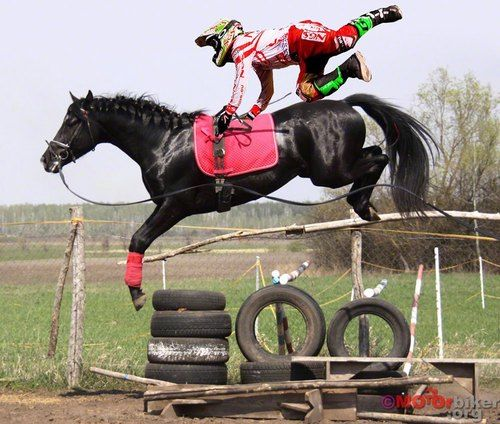 Horse Dirt Bike Dirt Bike Rider Motocross Horses Trick Riding