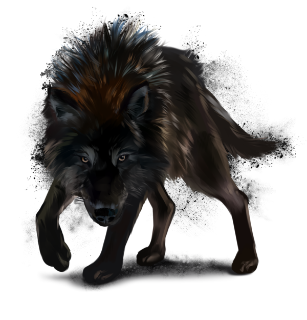 Wolf By Kajennadeviantartcom On At Deviantart Pakt Wolf