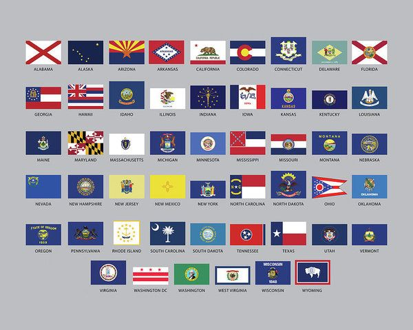 State Flags Of The Usa Art Print By Roy Pedersen State Flags