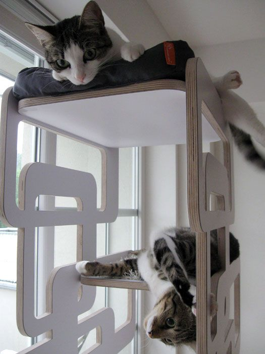 gallery design scratching post cat furniture design for cats pets oscar climbing. Black Bedroom Furniture Sets. Home Design Ideas