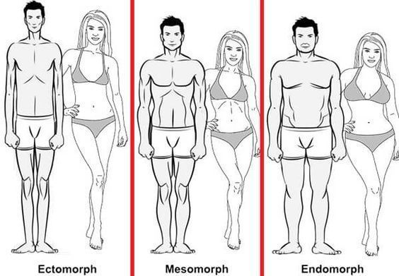 The Best Diets and Workouts for Your Body Type | Ectomorph Natural Bodybuilder | Famous Ectomorphs |...
