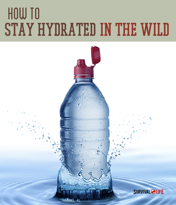 How To Stay Hydrated In The Wild  | Survival Prepping Ideas, Survival Gear, Skills & Emergency Preparedness Tips - Survival Life Blog: survivallife.com #survivallife
