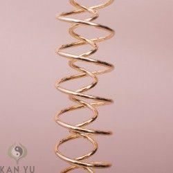 Feng Shui Dns Spirale Doppelhelix