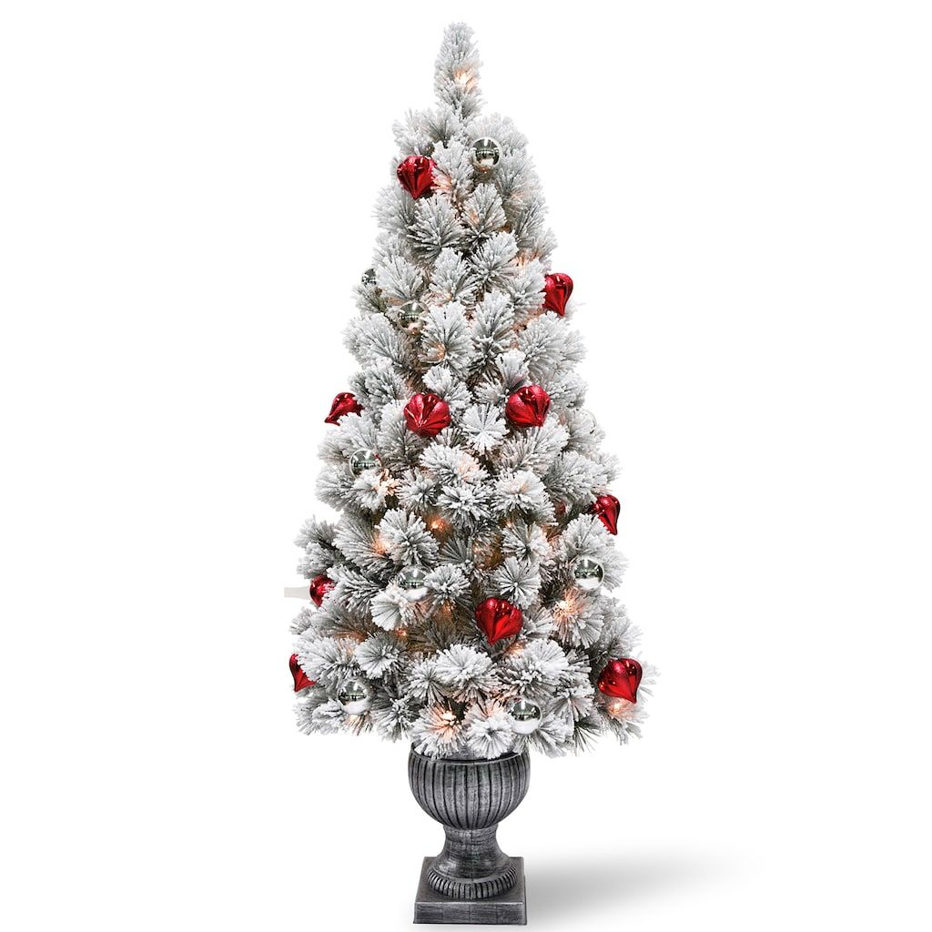 National Tree Company 5-ft. Pre-Lit Snowy Bristle Pine ...