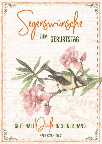 Postkarte Segenswunsche Vogel Gottes Segen Zum Geburtstag