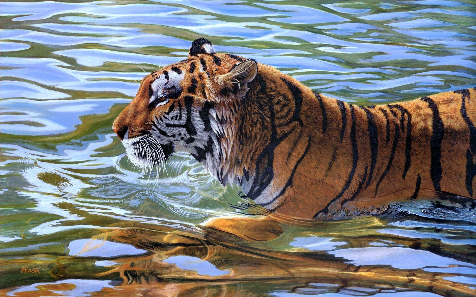 6 Lovely F Tos De Animales Para Fondo De Pantalla En Hd: Animals 1920x1080 Full HD Wallpapers