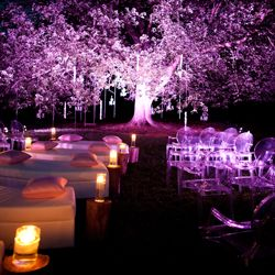 A Mid-Autumn Night's Dream is a styled shoot inspired by an evening ceremony outside with mood lighting.