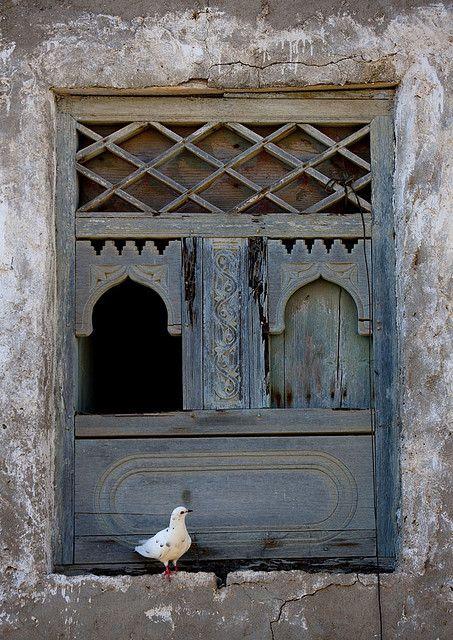 #wooden #window #bird :)