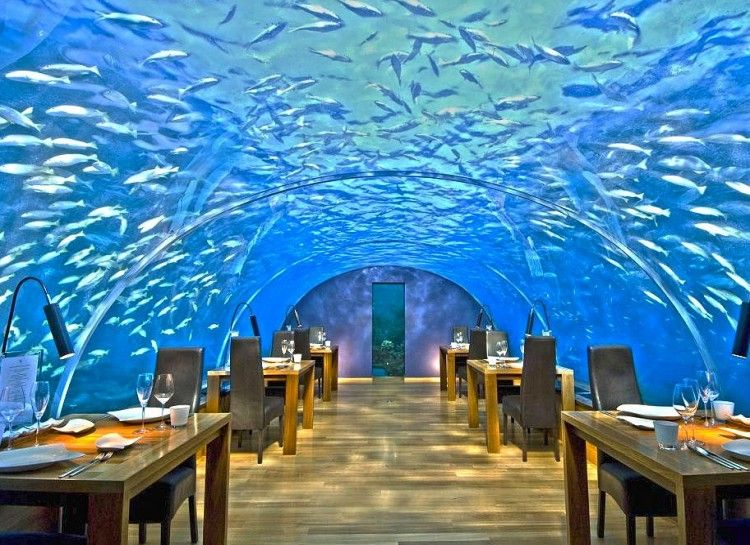 Amazing Unique Restaurants Part - 3: 16 Of The Most Unique Restaurants In The World - Swifty.com