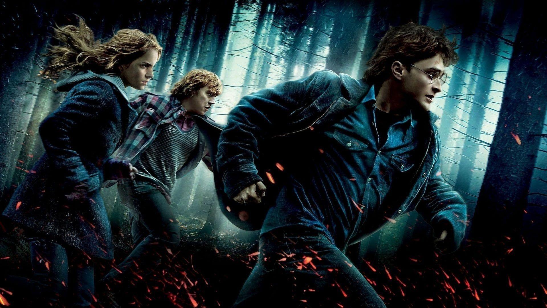 Harry Potter Y Las Reliquias De La Muerte Parte 1 2010 Pelicula En Castellano Online Harry Potter Wallpaper Harry Potter Books Free Harry Potter Movies