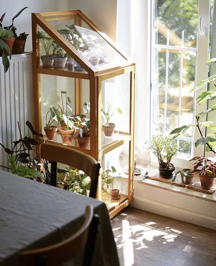 Pin by Escape on home in 2020 | Indoor greenhouse, Cheap