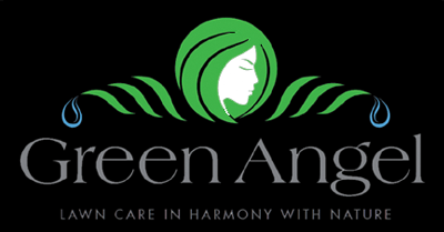 Green Angel Lawn Care Is An Organic Lawn Care Company Serving Fairfield County Ct And Westchester Cou Lawn Care Companies Lawn Care Organic Lawn Care