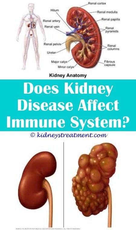 6 Clever Hacks: Kidney Failure Tips kidney cleanse detox.Kidney Infection Pregna... -   #vitamineBottle #vitamineDaily #vitaminePackaging #kidneycleanse