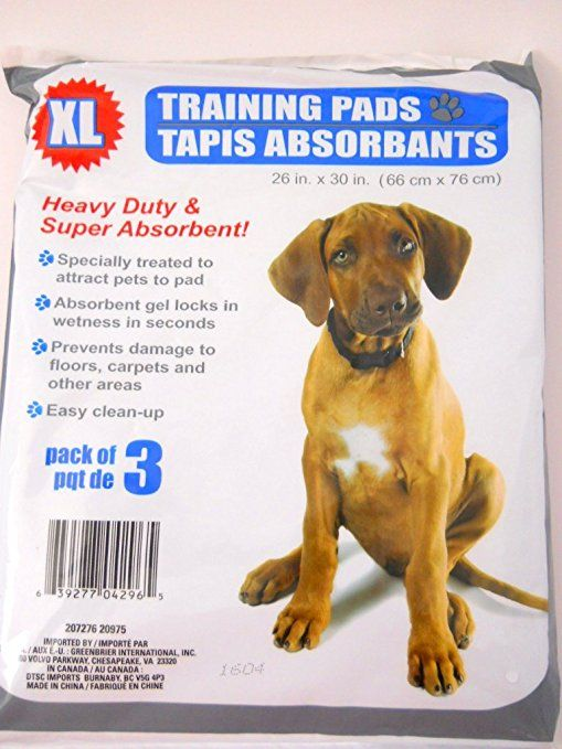 Amazon Com New Dog Housebreaking Training Pads Set Of 4 Packages