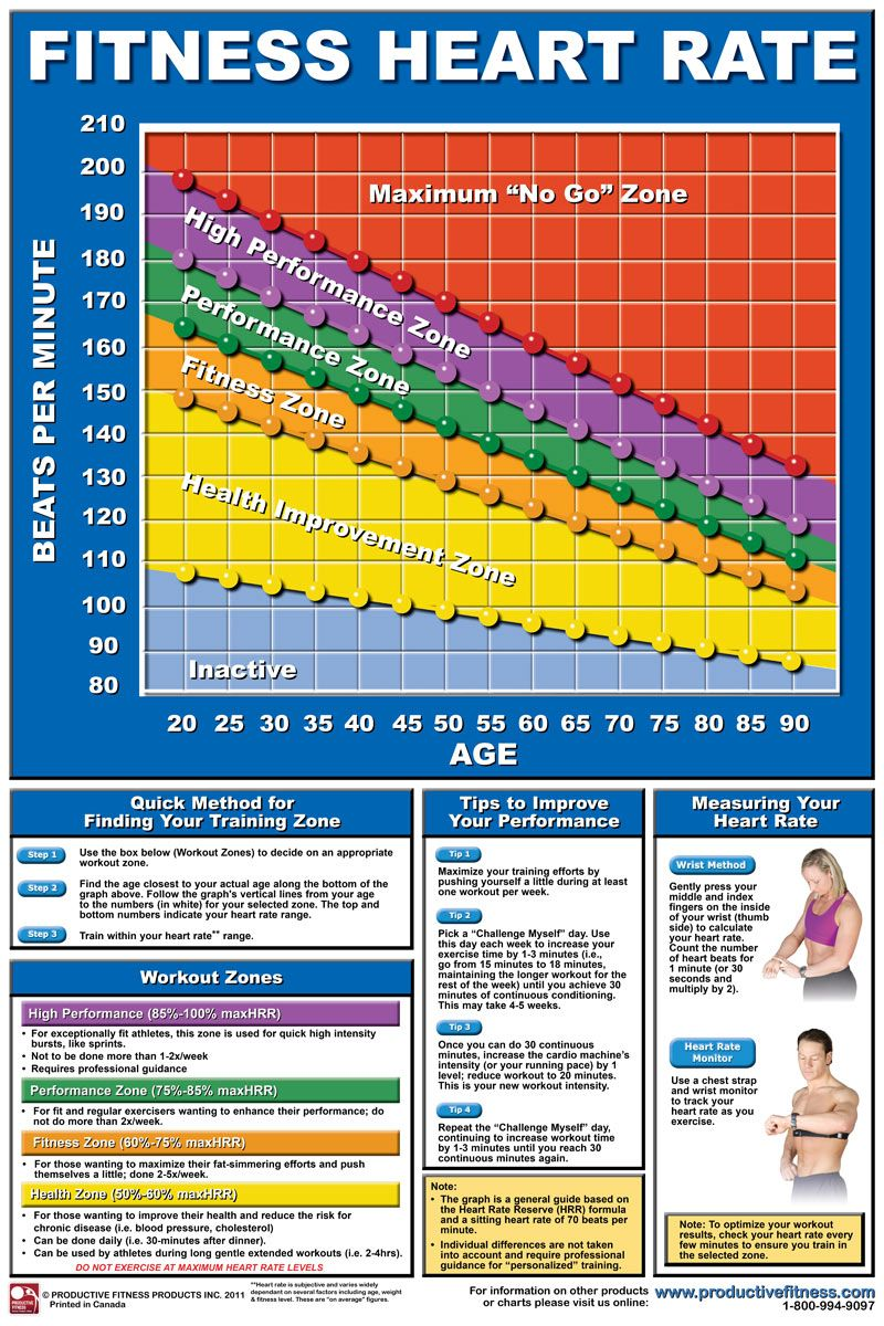 Heart Rate Chart  HttpWwwProductivefitnessComImages