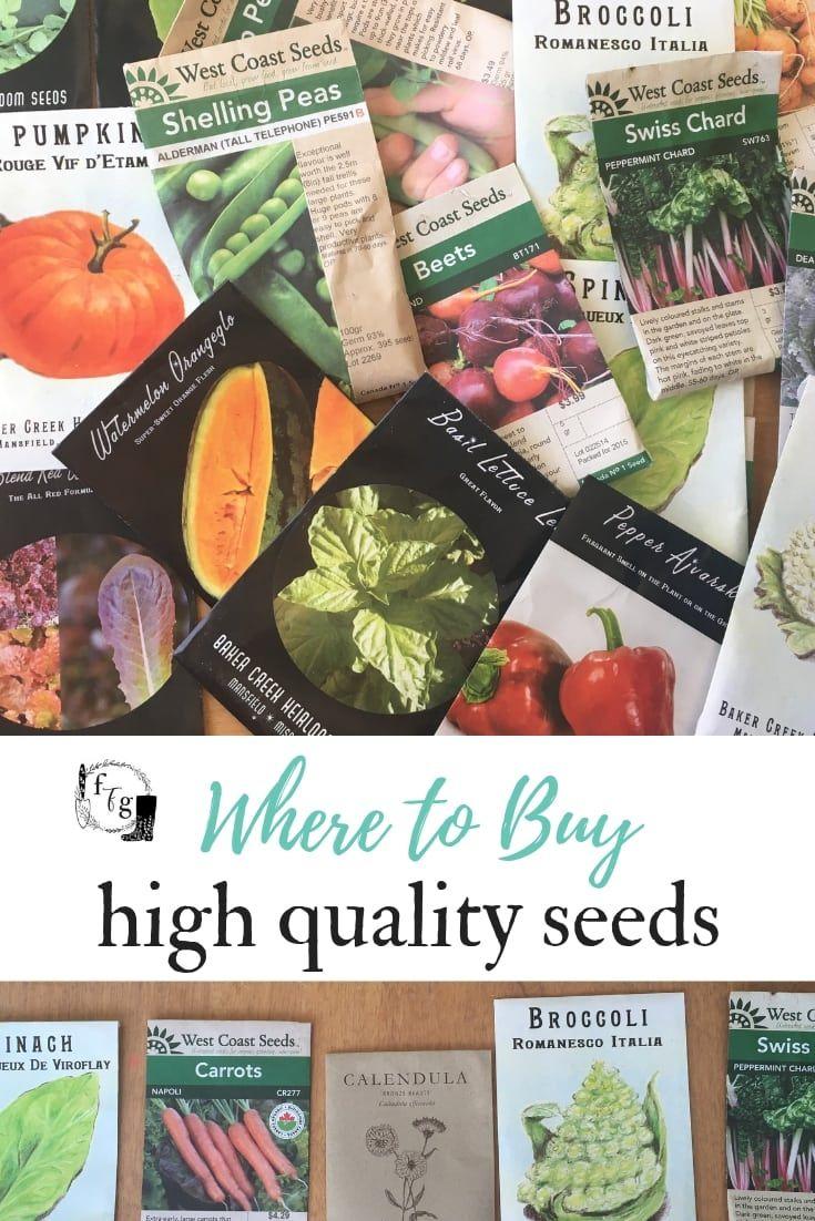Great Seed Companies to Buy Vegetable & Herb Seeds Herb
