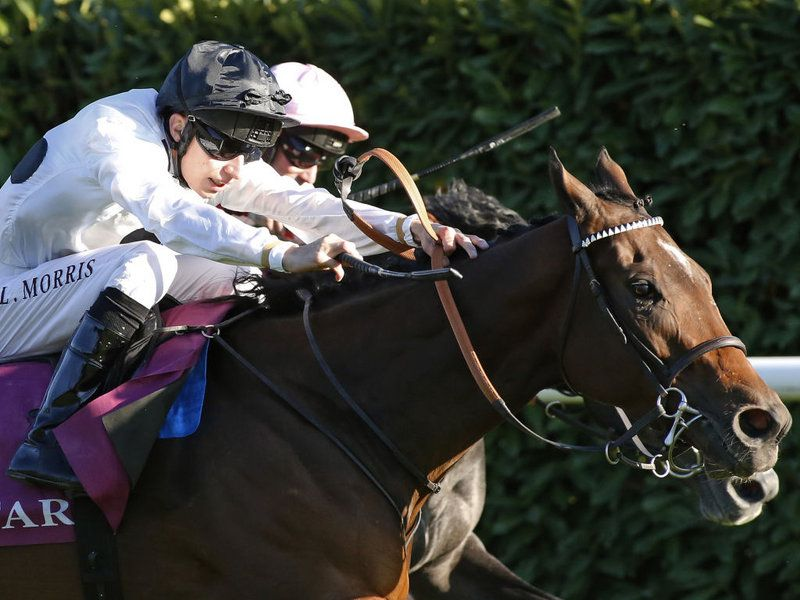 Marsha. Prix de l'Abbaye. Horse racing bet, Horses