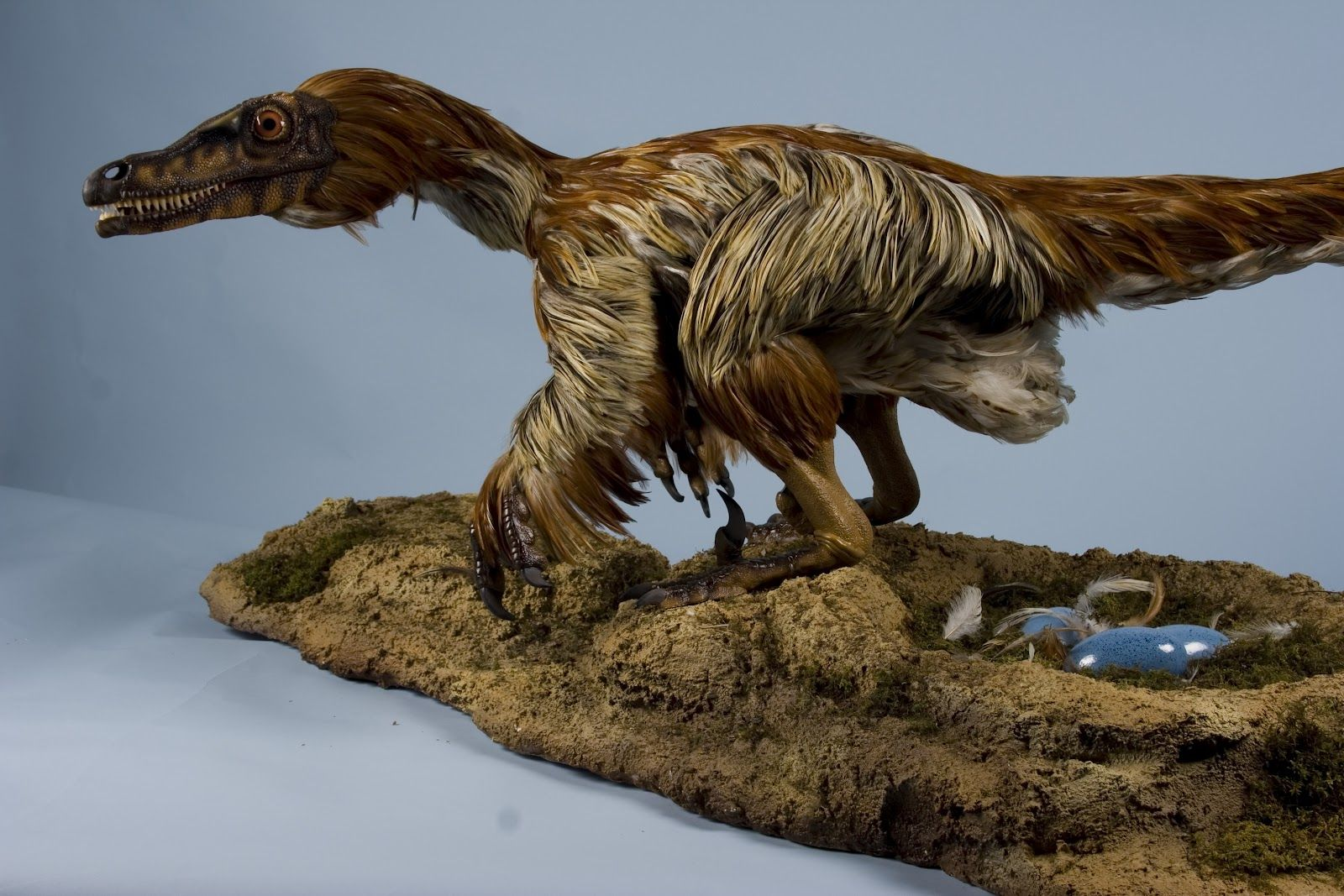 Velociraptor Dinosaur | Email This BlogThis! Share to Twitter Share to Facebook Share to ...