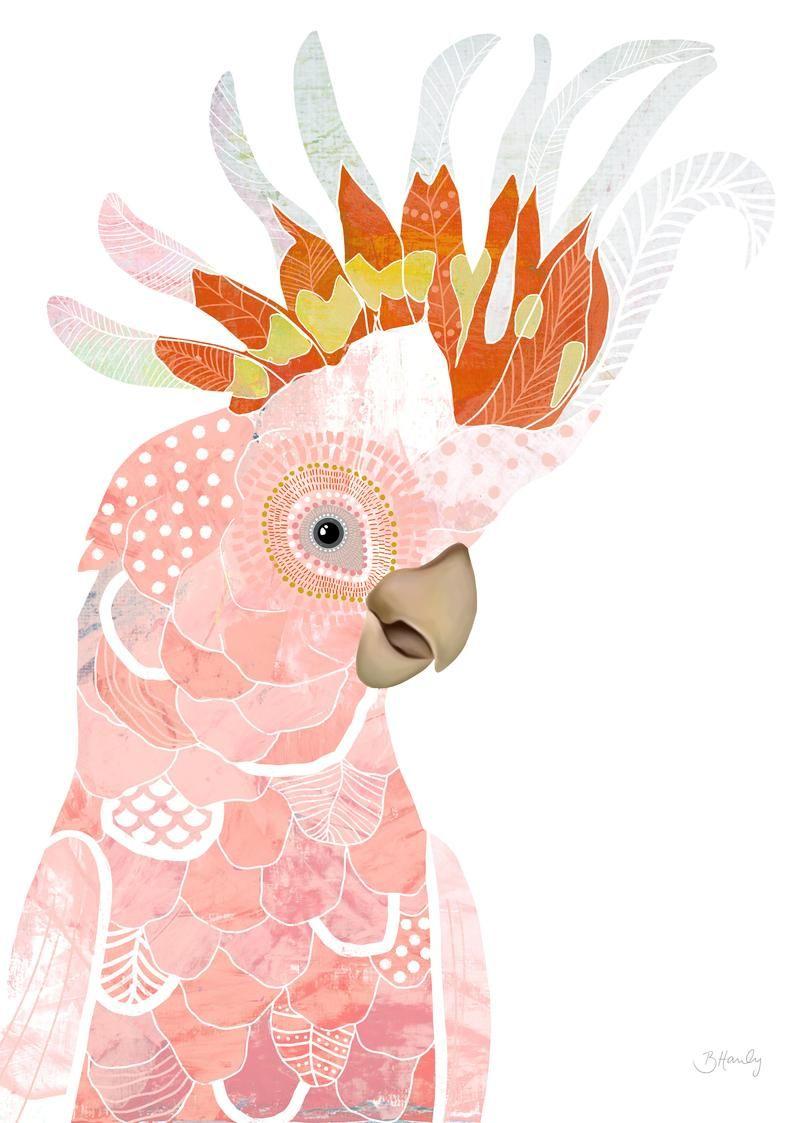 A3 A2 A1 Sizes Cockatoo Australian Bird Animal Art Print
