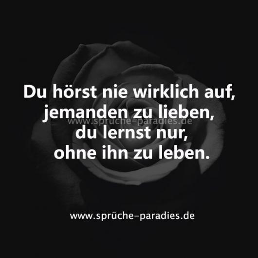 #auf #hörst #ihn #Jemanden #Leben #lernst #lieben #nie #