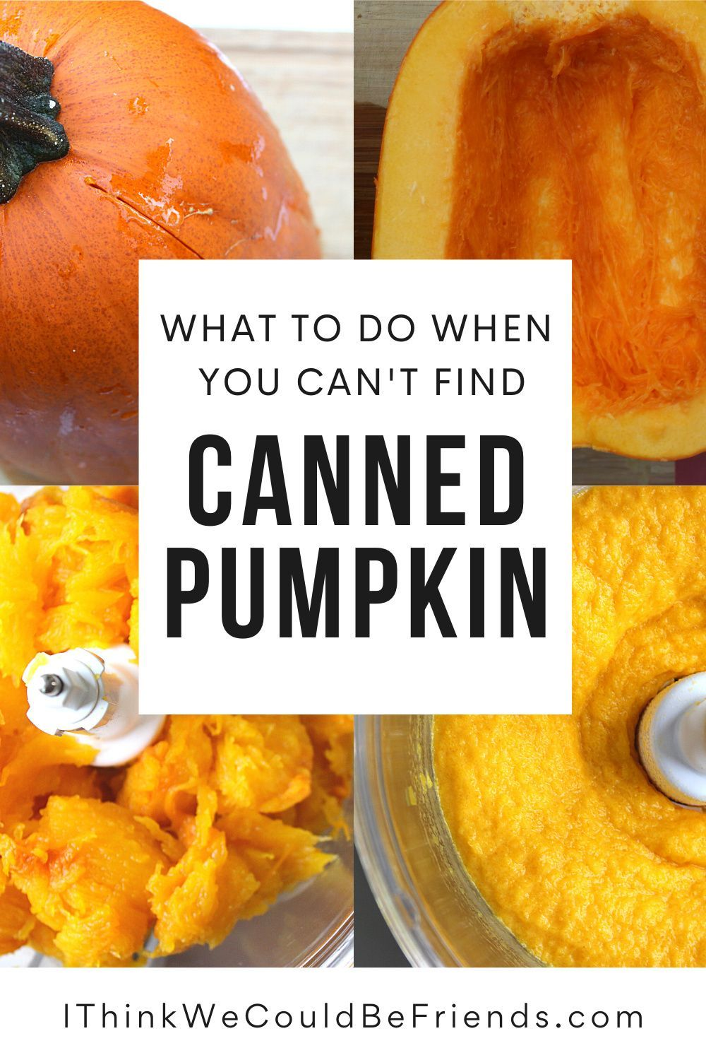 12++ Why cant i find canned pumpkin ideas