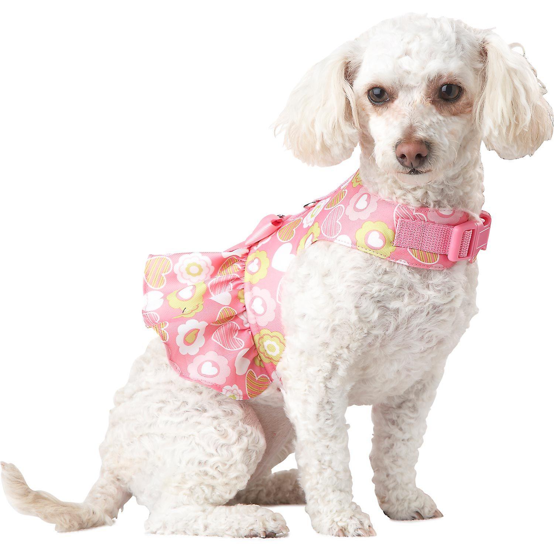 Target Dog Collar Flowers