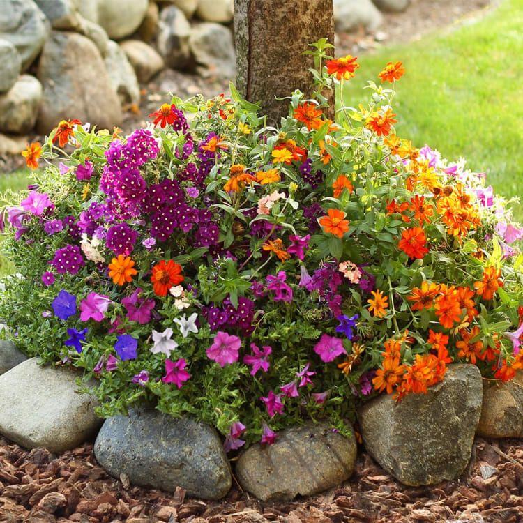 Pre Seeded Flower Garden Mat Garden Mats Flower Garden