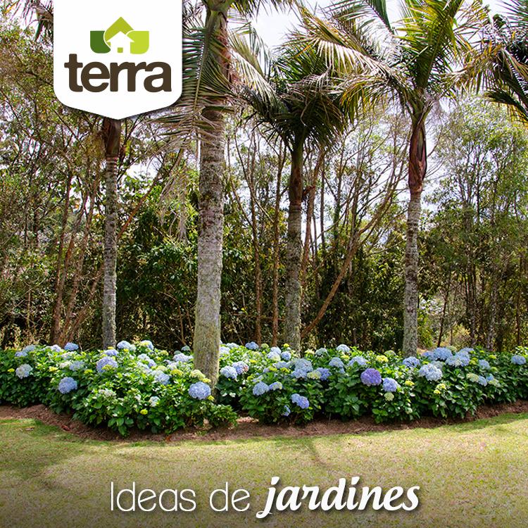 Una idea para un jard n con mucho estilo es combinar for Arboles altos para jardin