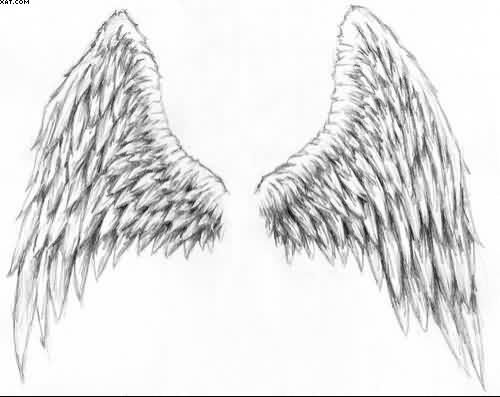 Pencil Drawings Of Angel Wings