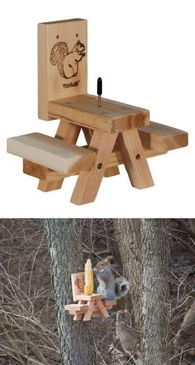 Squirrel Picnic Table Squirrel Feeder