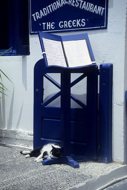 Waiting for food outside a restaurant in Santorini...